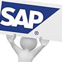 SAP快消品分銷ERP軟件 消費品分銷商ERP系統廠
