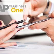 WMS倉儲管理系統供應商 SAP倉儲管理ERP軟件廠