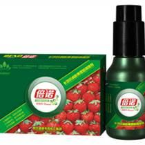 供应-种草莓选倍诺草莓专用叶面肥