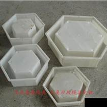 六棱护坡塑料模具生产
