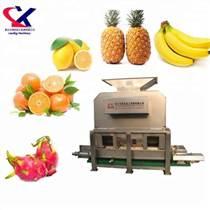 領先機械專業供應菠蘿加工設備/