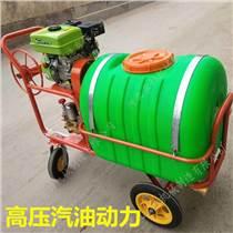 推車式手推式打藥機200升300升高壓農用汽油動力噴