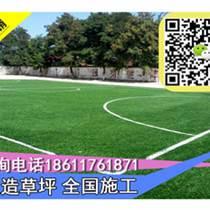 河北邯郸装饰假草材料门球场专用草施工