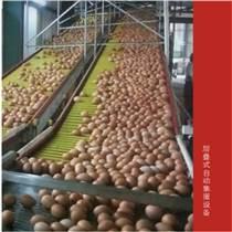 中州牧業集蛋機可定制集蛋速度快