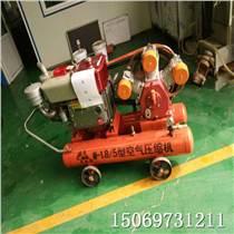 防汛搶險打樁機 便攜式防汛搶險打樁機 植樁機