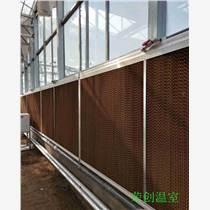 【福建温室】沙县连栋温室 智能温室 8430型连栋薄