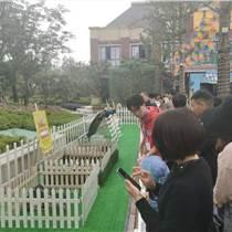 室內萌寵動物出租展覽