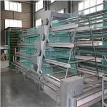 河南中州專業生產高檔蛋肉雞籠籠養設備 層疊雞籠