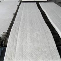 有机热载体锅炉保温隔热硅酸铝棉 热水锅炉隔热陶瓷纤维