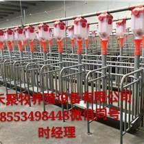 养猪料线喂料定量杯定量桶 自动喂料设备厂家
