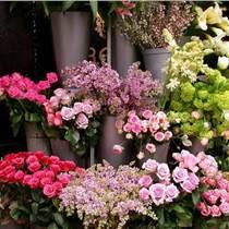 告白花艺生活馆 它是花店中的优质品牌