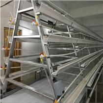 中州牧业养鸡设备 平带清粪机 输送带式清粪机