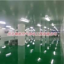 北京食品净化车间装修/洁净车间装修选河北峰帆净化