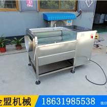 陽江果蔬清洗機小型多少錢