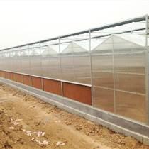 德州中空陽光板雨棚工程