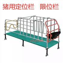 滄州[新品] 養豬設備定位欄母豬定位欄肥豬定位欄