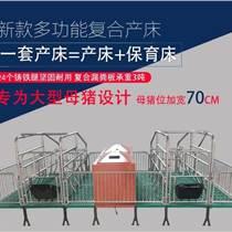 養豬設備廠家直銷售 母豬分娩欄(21003600)