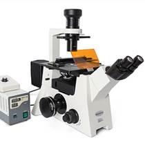 荧光显微镜MF53