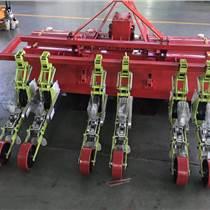蔬菜播種機 蔬菜精量播種機旋耕一體機