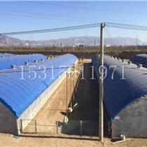廠家直銷養殖大棚 畜牧溫室大棚 水產養殖大棚
