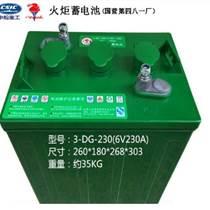 淄博火炬蓄电池3-DG-210(3-EV-180)旅