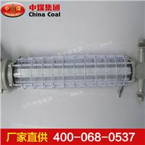 DGS10-24/127L(C)礦用隔爆型LED巷道