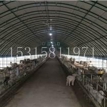 宁津嘉坤农牧大棚厂促销优质养殖大棚