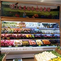 廣州蔬菜保鮮柜哪里有賣廣州果蔬展示柜什么品牌好
