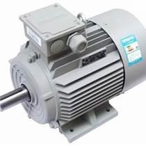 陜西低壓交流高效變頻電機三相異步電動機1TL0001