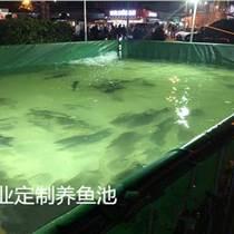 戶外防曬帆布魚池-魚苗帆布培育池-礦山帆布蓄水池
