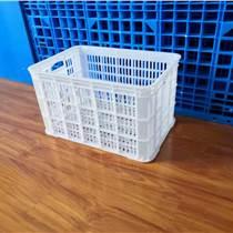 河南白色塑料水果周转筐 加厚周转筐塑料 可堆式鸡蛋框