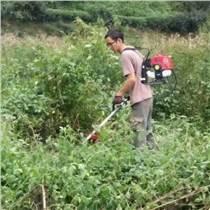 紹興市小型家用農用開荒灌木機汽油除草神器