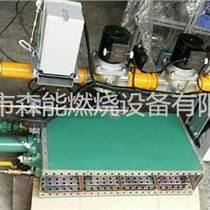 涂布機燃燒器熱風爐直燃燃燒器天時RAH-80森能燃燒