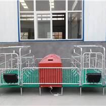 厂家定做母猪产床猪用单体双体产床分娩床定位栏保育床限