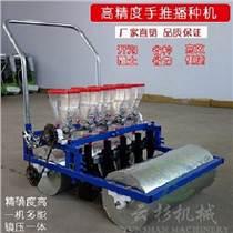 熱銷手推蔬菜播種機上海青芹菜大蔥精播機韭菜菠菜點子機