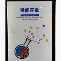 陜西安徽全腦教育加盟品牌