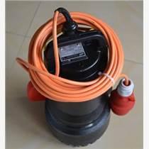 WAKER潛水泵SGF 10-2 WS