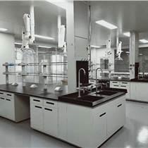 專業生產實驗臺,通風柜,氣瓶柜等實驗室基礎設施