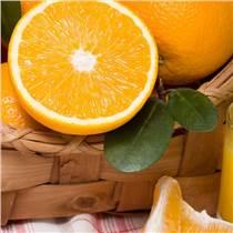 进口橙浓缩汁厂家直销