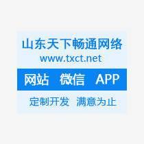 濟南軟件開發 網站開發 app開發 定制軟件開發