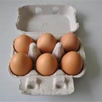 紙漿模塑紙托雞蛋托六枚十枚十二枚蛋盒