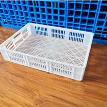 鞏義塑料周轉筐平菇筐 白色鏤空工業筐 塑膠耐摔耐用菜