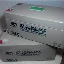 免維護蓄電池 BT-SHE-100-12 /EPS