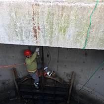 水下設備安裝 沉船打撈 補漏封倉 海生物清除 螺旋槳