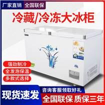 奧創598冰柜單雙溫保鮮冷凍兩用家用商用臥式冷藏冷凍