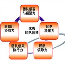 廣州企業拓展:卓越團隊凝聚力