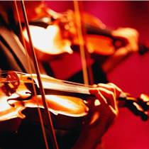 皇岗口岸小提琴进口报关/乐器进口清关公司