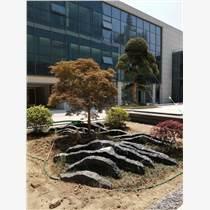 廣東珠海太湖石假山石頭天然原石大小型奇石庭院景觀石