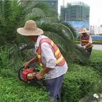 中山綠化養護 怡軒園林草坪養護綠化養護服務