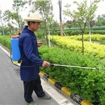 珠海綠化養護 怡軒園林苗木移栽綠化養護服務